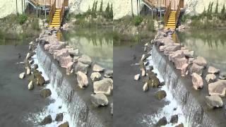 【中国旅行記】伊寧、イリ(伊犁)河大橋をSH-12Cで撮影 Yili river Big Bridge【3D動画】