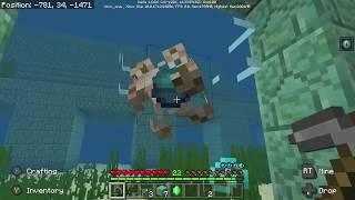 Minecraft - Moskstraumen