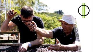 100% magyar kávé - Costa Ricából