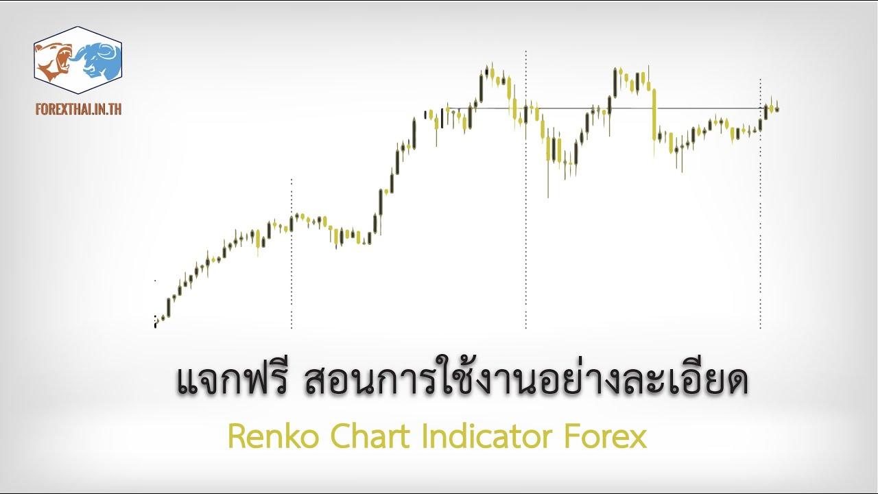 Renko Chart  Indicator Forex แจกฟรี สอนการใช้งานอย่างละเอียด