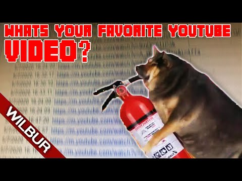 I Asked 5000 People to Send me their Favorite Youtube Video