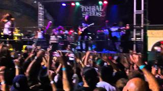 "Tribal Seeds ""Vampire"" (FULL VERSION) LIVE Wavehouse"