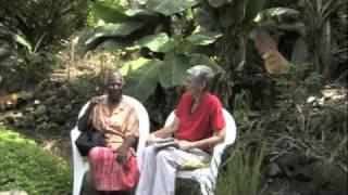 Freed Slave Emigrants to Samana
