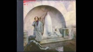 03 - John Frusciante - Time Runs Out (The Will To Death)