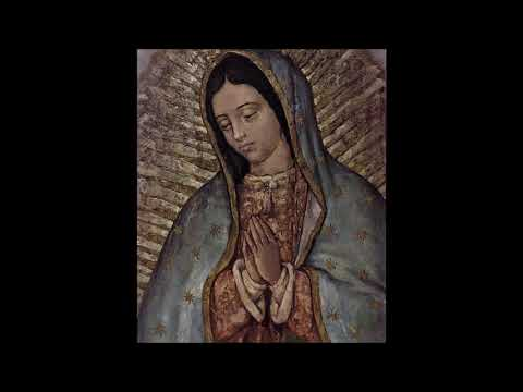 Hope Sermon Series #3: Definition and A Word about Our Lady of Guadalupe