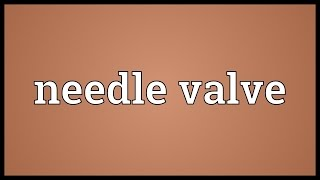 Needle valve Meaning