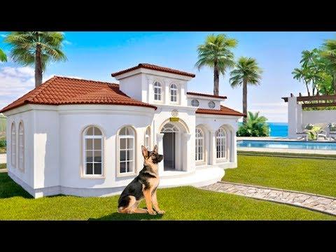 5 casas mas lujosas para MASCOTAS que no creeras que son reales