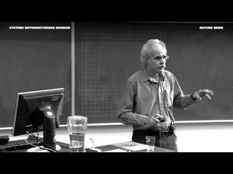 Nature News - Higgspartiklen og universets gådefuldhed