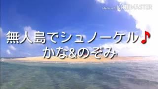 沖縄本島南城市の無人島サンゴの砂で出来たウカビ島でシュノーケリング...