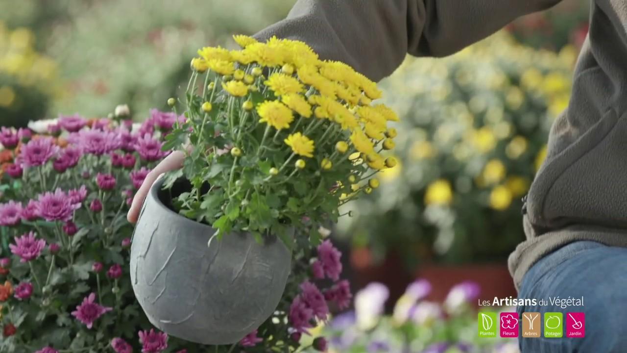 quelles fleurs planter en automne quelles plantes pour. Black Bedroom Furniture Sets. Home Design Ideas