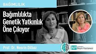 Bağımlılıkta Genetik Yatkınlık Öne Çıkıyor- Prof. Dr. Nesrin Dilbaz