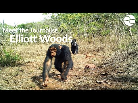 Meet the Journalist: Elliott Woods