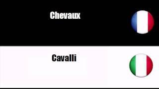 TRADUCTION  = ITALIEN = FRANCAIS = Bovini, bestiame e animali piccoli
