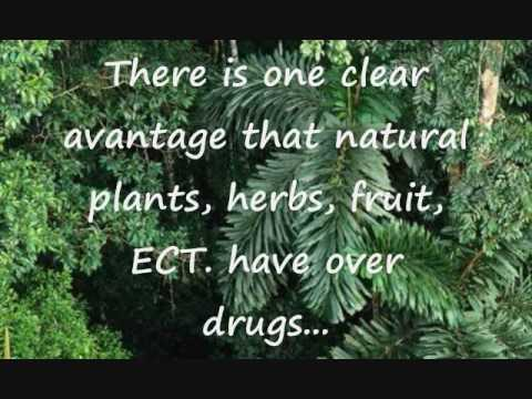Islamic Hospitals and herbal remedies (Herbs vs Drugs)
