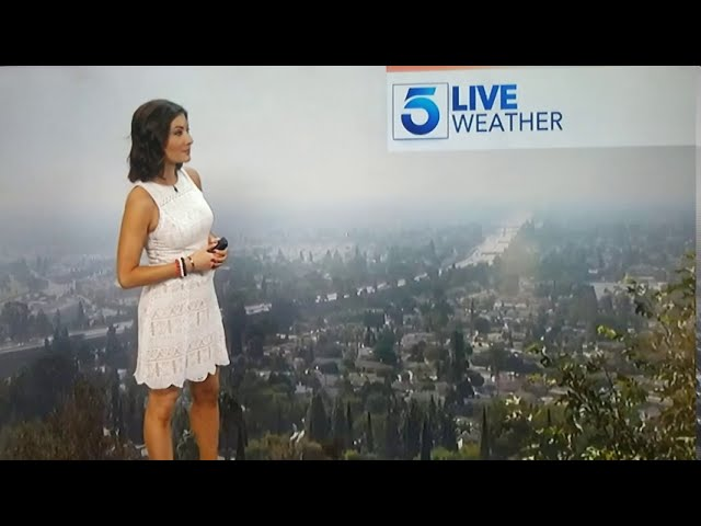 KTLA Morning News Segment