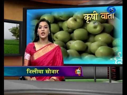 कृषीवार्ता बाजारभाव हा विशेष कार्यक्रम १६ ऑगस्ट २०१८ रोजी प्रसारित झाले