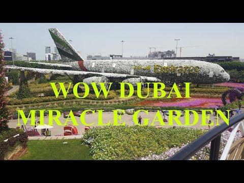 Dubai Miracle Garden 2018 | Emirates Air Bus 380