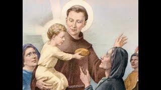 Tredicina S. Antonio da Padova con scritti della vita del santo - Settimo Giorno