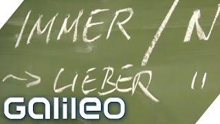 Checkerwissen Schule & Lernen | Galileo Lunch Break