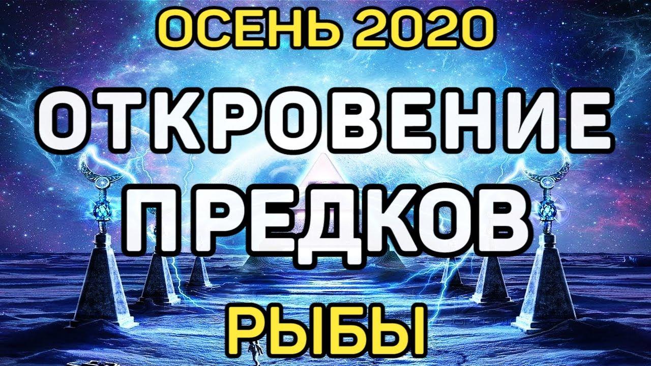 РЫБЫ. ЧТО ВАМ НУЖНО ЗНАТЬ ПРЯМО СЕЙЧАС. ОСЕНЬ 2020. ЧТО ХОРОШЕГО ПО СУДЬБЕ. ПРОГНОЗ ТАРО ОНЛАЙН.