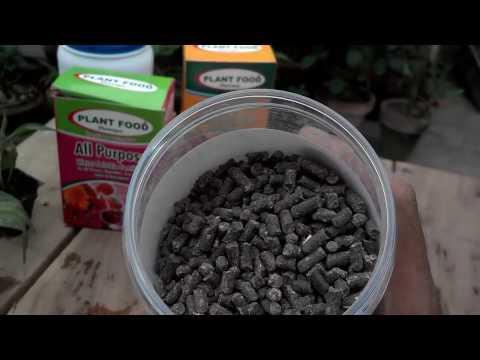 Best Way to Fertilize Garden  Fertilizer Nutrients  Kitchen Gardening Overview UrduHindi