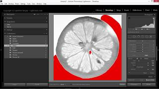 корректирующая кисть в лайтрум. Как использовать Adjustment Brush в Adobe Lightroom?