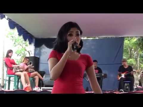 riris arista hot sambalado_ satria pro kociet mahendra thumbnail