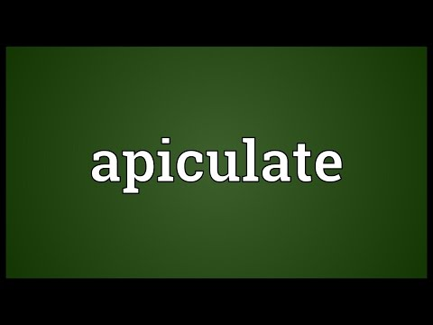 Header of apiculate