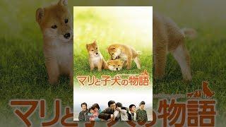 新潟県山古志村に暮らす石川家は、役場職員の優一、息子の亮太、妹の彩...