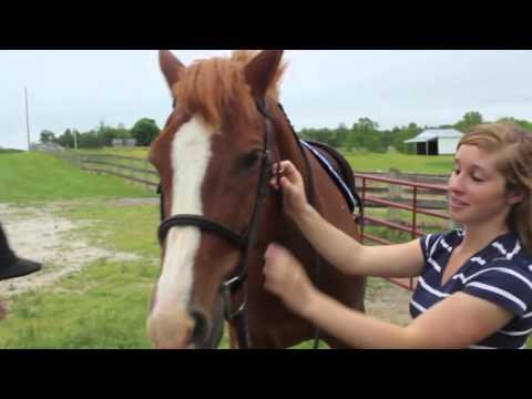 How To Teach Beginner Riders