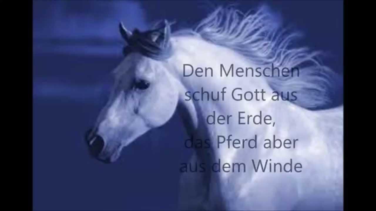 Spruch Pferd Vertrauen