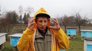 История канала Пчеловодство и Природа | Эстафета пчеловодов