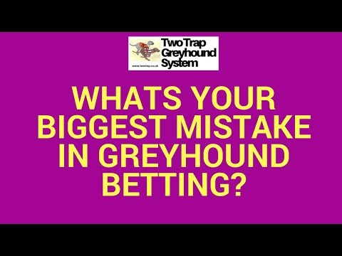 Whats Your Biggest Mistake in Greyhound Betting?