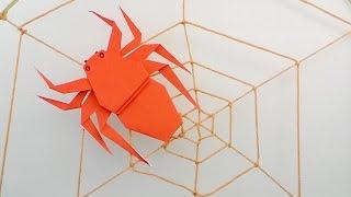 Origami Spider / พับแมงมุม