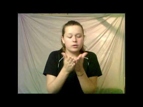 I Wanna Go Back  David Dunn in ASL