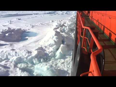 видео: Ледокол идет на Полюс