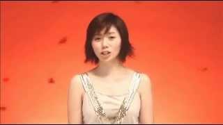 柴田淳 - HIROMI