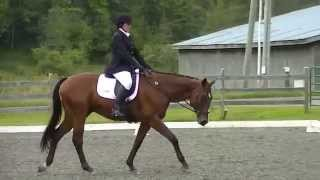 Prairie StipeMaas & Reginald McDougal OT Dressage