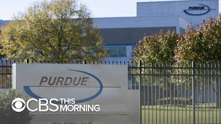 If OxyContin-maker Purdue Pharma files for bankruptcy plaintiffs could see smaller payouts