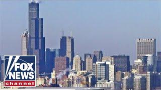 Bongino on Chicago violence: