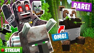 Minecraft The Deep End SMP Stream 10: Pandas & Illagers