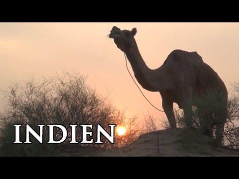 Rajasthan: Das Reich