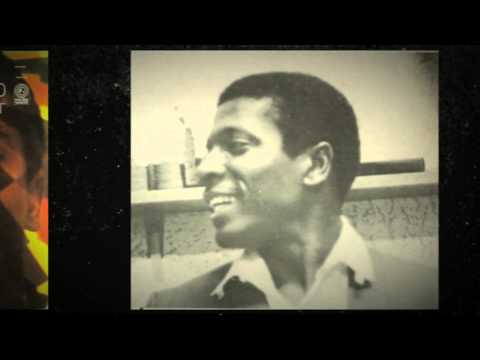 Little Happy Go Lucky Girl - Brenton Wood from the album Baby You Got It