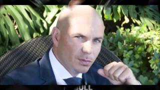 pitbull photo gallery