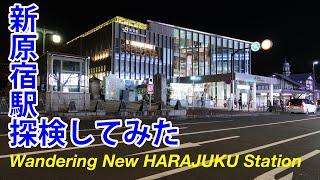 Wandering New JR HARAJUKU Station opened at Mar.21th 2020, TOKYO.[Mar. 2020] 新原宿駅を探索してみた