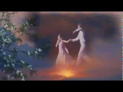 Концерты Рады Рай, гастрольный график