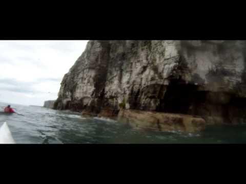 A Journey Under Bempton Cliffs by Sea Kayak