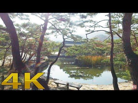 Namsangol Traditional Village 南山コル韓屋村 4k