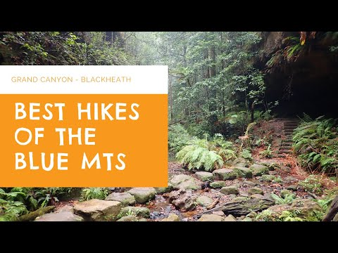 Best Blue Mountains Hikes - Grand Canyon Circuit