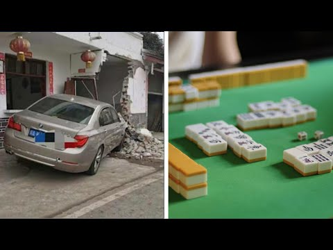 Kakek nenek tetap main mahjong meski mobil tabrak rumah; Anjing bodyguard di Malaysia -  TomoNews